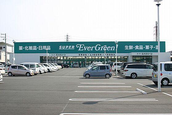 戸建賃貸-和歌山市加納 【スーパー】エバグリーン四ヶ郷店まで738m