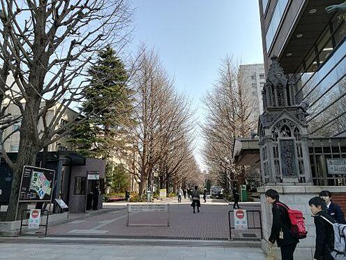 ビル(建物全部)-渋谷区円山町 【大学】青山学院大学まで1716m