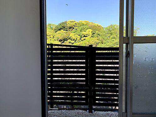 戸建賃貸-横須賀市坂本町2丁目 展望