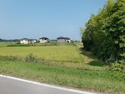土地-稲敷市大島 北側道路
