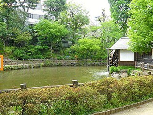 マンション(建物一部)-渋谷区円山町 鍋島松濤公園