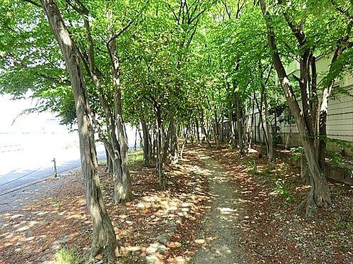 店舗・事務所・その他-羽村市栄町2丁目 栄緑地公園まで358m