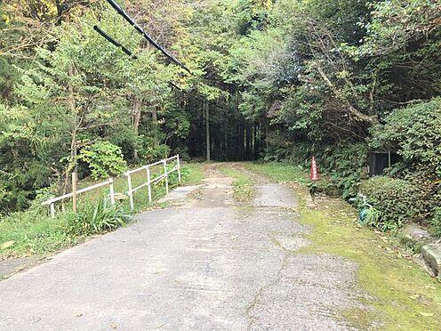 土地-豊田市花沢町小豆畑 緑溢れる閑静な地で、潤いの時間を