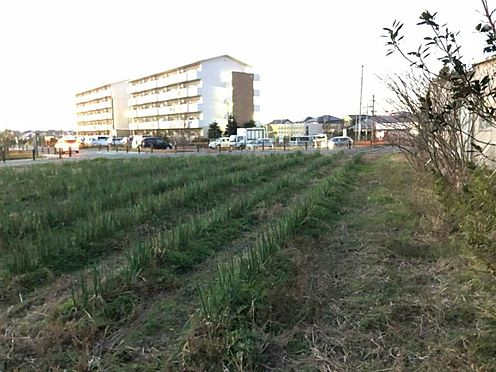 土地-豊田市市木町沖田 分家用地や事業用地等、計画に応じてご利用いただけます。