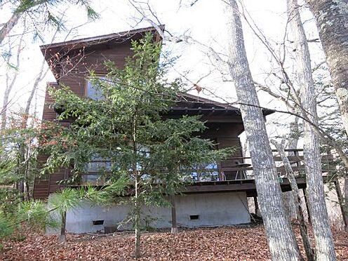 中古一戸建て-北佐久郡軽井沢町大字長倉 窓の前のモミの木はクリスマスにピッタリですね。
