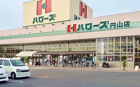 建物全部その他-岡山市中区湊 ハローズ円山店
