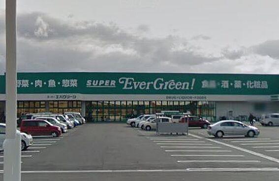 戸建賃貸-和歌山市梶取 【スーパー】スーパーエバグリーン 福島店まで808m
