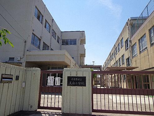 中古マンション-名古屋市天白区島田1丁目 天白小学校…徒歩約12分