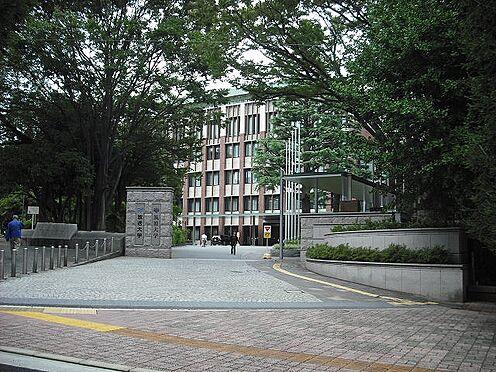 ビル(建物全部)-文京区大塚3丁目 大学筑波大学(東京キャンパス)まで592m