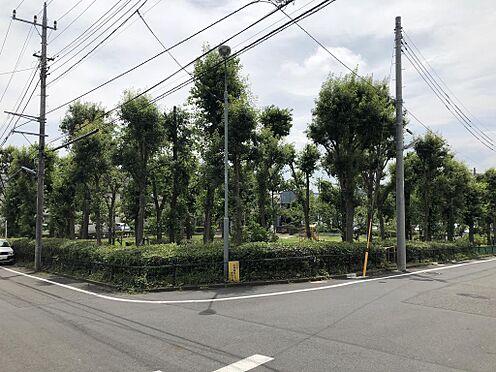 アパート-八王子市越野 徒歩1分弱の公園