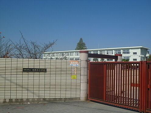戸建賃貸-磯城郡田原本町大字阪手 田原本小学校 徒歩 約8分(約600m)