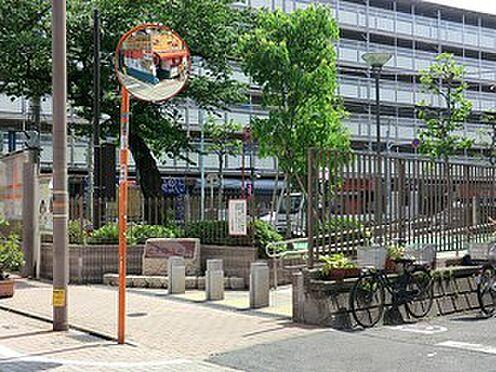 マンション(建物全部)-渋谷区幡ヶ谷3丁目 周辺環境:六号坂上公園