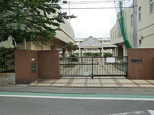 区分マンション-葛飾区青戸7丁目 【青戸中学校】昭和32年開校。青砥駅に近く、住宅や公園に囲まれた環境の良いところにある学校です。特別支援学級、難聴学級あり。
