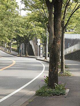 中古マンション-横浜市緑区霧が丘6丁目 霧が丘公園前バス停