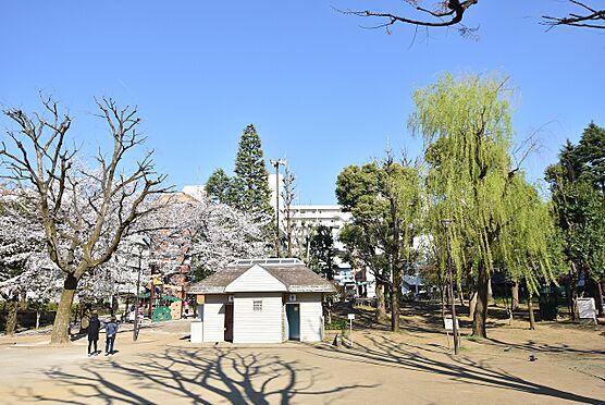 アパート-新宿区北新宿4丁目 区立北柏木公園…徒歩1分(約50m)
