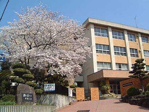 中古一戸建て-和歌山市田屋 【中学校】紀伊中学校まで2995m