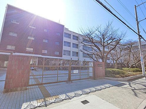新築一戸建て-大阪市平野区背戸口3丁目 大阪市立平野中学校