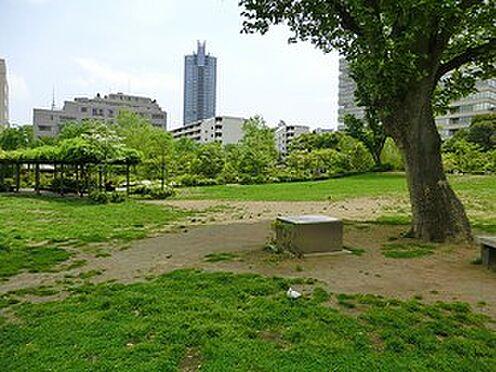 マンション(建物一部)-港区六本木3丁目 周辺環境:檜町公園