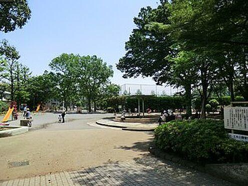 マンション(建物全部)-世田谷区赤堤2丁目 赤松公園