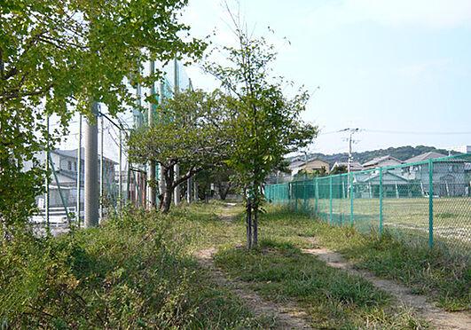 店舗(建物全部)-和歌山市松江北5丁目 【公園】西庄公園まで1920m