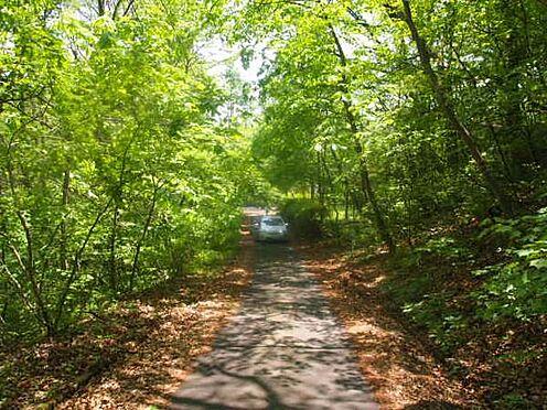 土地-北佐久郡軽井沢町大字長倉 前面道路を東側から見た様子。緑のトンネルとでもいうところでしょうか。