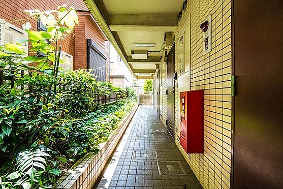 アパート-浦安市富士見2丁目 1階廊下