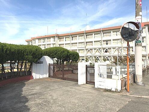 土地-豊中市上野西4丁目 豊中市立第十一中学校