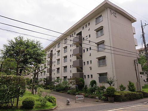 中古マンション-横浜市緑区霧が丘6丁目 緑溢れる住環境