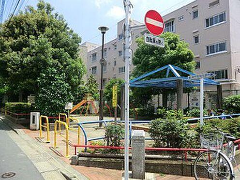 マンション(建物一部)-新宿区西新宿5丁目 周辺環境:さつき児童遊園