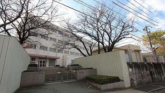 新築一戸建て-名古屋市天白区菅田1丁目 山根小学校…徒歩約15分 約1170m