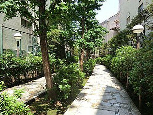 マンション(建物全部)-新宿区余丁町 新宿遊歩道公園