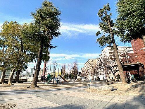 区分マンション-大阪市城東区中央3丁目 公園からもマンションが見えます