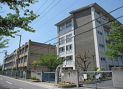 マンション(建物一部)-堺市堺区栄橋町1丁 堺市立月州中学校 約900m 徒歩12分