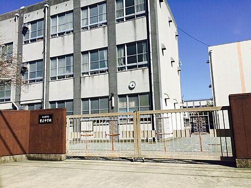 新築一戸建て-名古屋市中村区稲葉地町4丁目 豊正中学校 739m 徒歩約10分