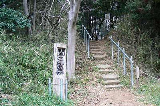 アパート-松戸市小金 関さんの森まで889m