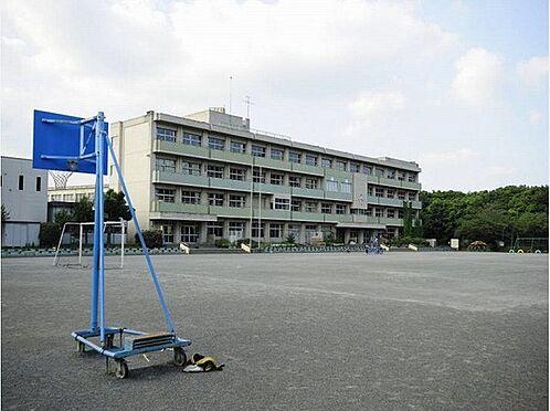 建物全部その他-藤沢市白旗4丁目 藤沢市立大清水小学校まで800m