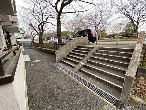 マンション(建物全部)-葛飾区東金町5丁目 水元公園が目の前です。北側道路は桜並木です。