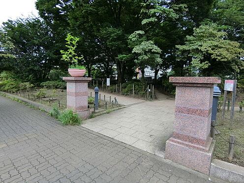 中古マンション-練馬区練馬1丁目 区立平成つつじ公園(徒歩2分 150m)