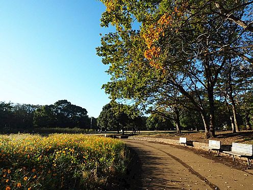 土地-船橋市夏見台3丁目 行田公園まで約1500m