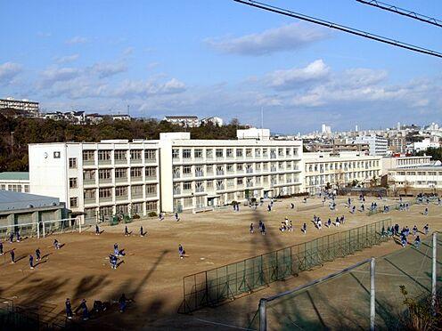 土地-神戸市垂水区舞子坂1丁目 神戸市立舞子中学校
