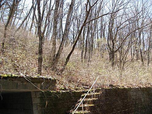 土地-北佐久郡軽井沢町大字長倉千ケ滝西区 こちら敷地へのアプローチになります。手すり付きの階段は便利ですよね。そして階段を登ると・・・