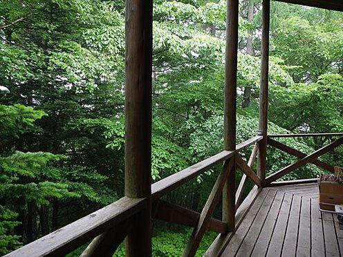 戸建賃貸-北佐久郡軽井沢町大字軽井沢 ウッドデッキからの景色。閑静な別荘地で静かに過ごせます。