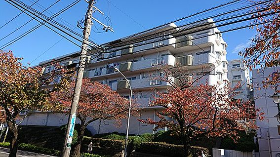 マンション(建物一部)-横浜市青葉区桜台 外観