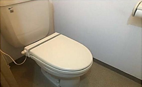 一棟マンション-東松山市神明町1丁目 トイレ