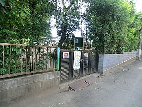 アパート-杉並区清水3丁目 周辺環境:裕和幼稚園