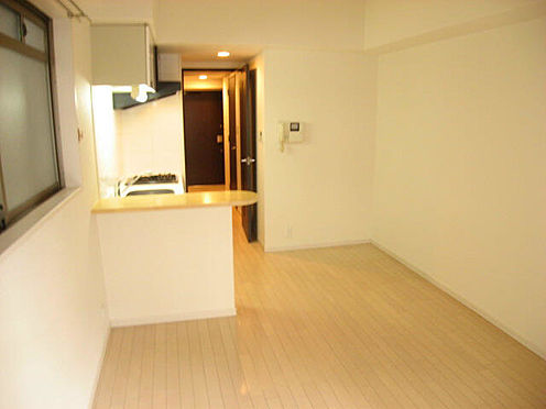 マンション(建物一部)-大阪市西淀川区野里1丁目 内装