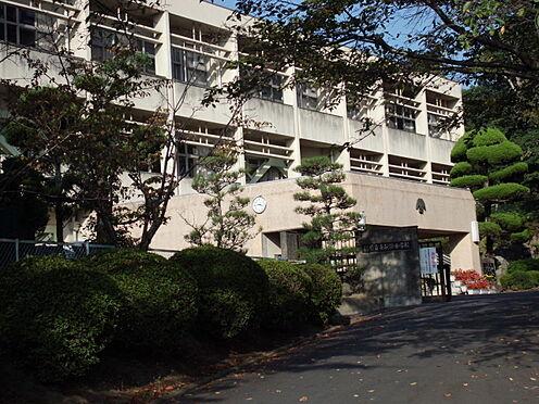 新築一戸建て-橿原市菖蒲町2丁目 畝傍中学校 徒歩 約10分(約750m)