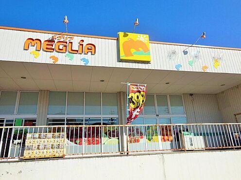 戸建賃貸-豊田市花園町塩倉 メグリア 若園店まで徒歩約19分(約1600m)