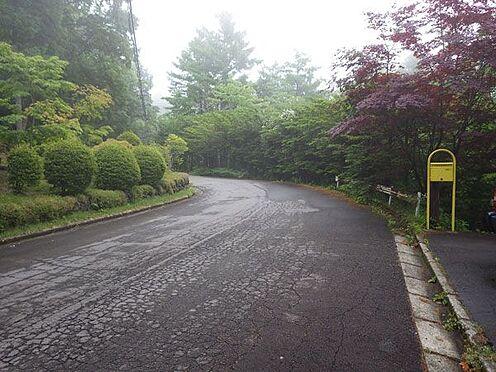 戸建賃貸-北佐久郡軽井沢町大字軽井沢 前面道路は舗装道路です。
