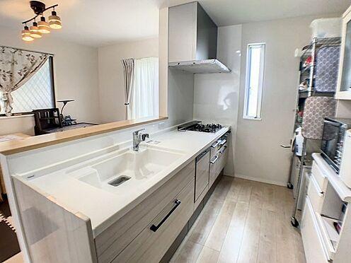 戸建賃貸-半田市亀崎高根町3丁目 主婦に嬉しい食洗機、浄水器付きの対面キッチン